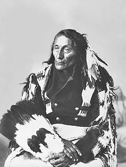 Learn cherokee syllabary